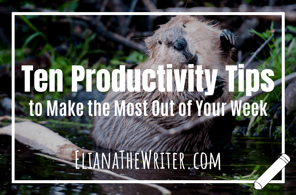 Ten Productivity Tips to Make the Most Out of Your Week