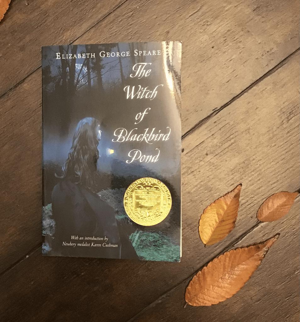"""BOOKS"" - The Witch of Blackbird Pond"